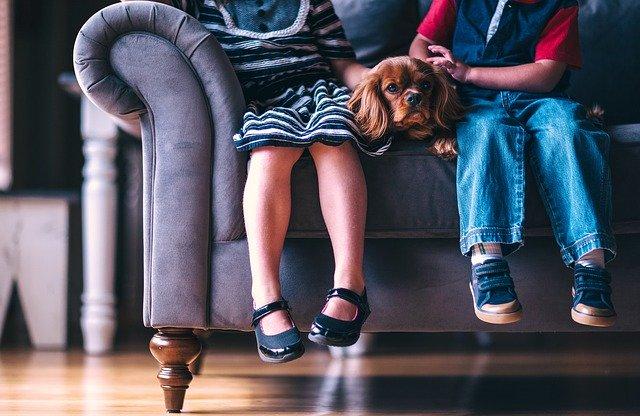 niños-sentados-en-sofa